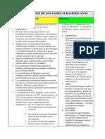 CONSTITUCIONES DE LOS PAISES SURAMERICANOS