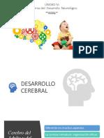 UNIDAD IV TRASTORNOS DEL NEURODESARROLLO