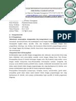 RPP 3.12 PBI