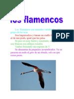 Los  flamencos son animales vertebrados