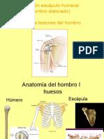 hombro anatomia y lesiones