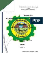 ENSAYO DE FISICA II