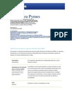 IFRS Para PYMES Definiciones Técnicas