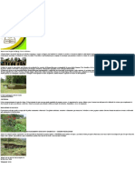 Permacultura __ Ambiental DATERRA __ Centro Ambiental