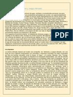 CASO ALMADA-Estrategia y competitividad-2020