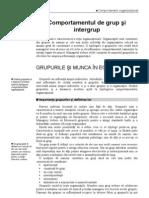 curs_07_dinamica grupurilor si munca in echipa