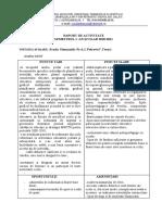raport_educativsemi20102011 (1)