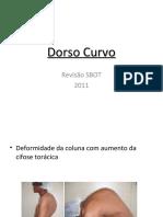 08-Dorso Curvo