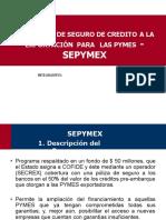 PROGRAMA-_-SEPYMEX