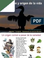 evolucion01-100418070716-phpapp02