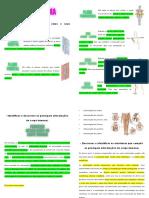 RAP01- Planos e eixos