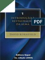 Introdução à Restauração Da Alma - David Kornfiel