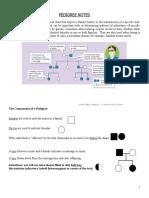 Pedigree Intro Worksheet