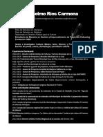 Resumen Presentación Abel Anselmo Ríos 2021