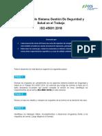 DT_112_2020_TAREA ISO 45001