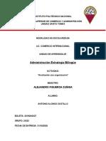 Alonso_Castillo_Antonio_Analizando_una_organizacio__n