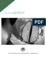 Pão Integral e Fermentação Natural