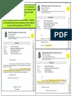 45O Lado Negro Do Judiciário Brasileiro - 172 - D11 - Da Interferencia de Autoridades