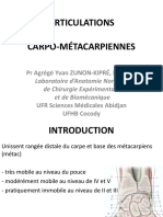 Articulations Carpo Metacarpiennes