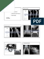 radiologia_veterinaria_fraturas_e_complicacoes