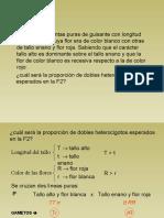 18 Problemas de Genetica Resueltos_parte8