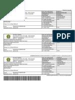 ImprimeGRUSimples.pdf Alisson