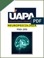 Tarea III de Neuropsicologia