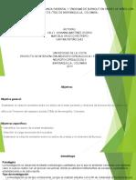 mapa marco teorico estilos de crianza y sindrome de burnout
