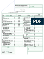 Formulario 210 Sistema Cedular (1)
