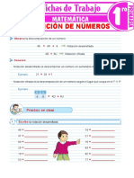 Descomposición-de-números-para-Primer-Grado-de-Primaria 19
