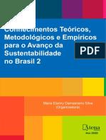 Conhecimentos Teóricos, Metodológicos e Empíricos Para o Avanço Da Sustentabilidade No Brasil 2