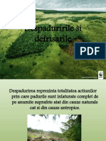 263550720-Despaduririle-si-defrisarile-pptx