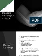Anatomia Radiologica MMSS1