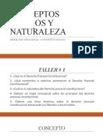 1 Naturaleza y Concepto Del Derecho Procesal Constitucional