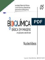 Aula de Nucleotídeos