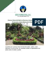 GEO FORESTAL CATALOGO DE VIVEROS F