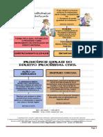 Princípios Do Direito Processual Civil