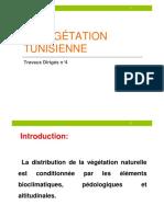 TD4 végétion tunisienne
