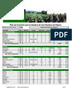 54_presupuesto_pepino_08_04