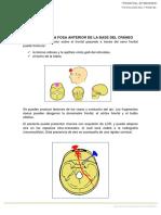 4. Patología Frontal