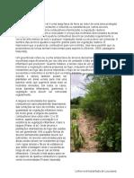 Technical Manual[1][151 282].en.pt