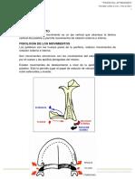 2. Biomecánica Palatino