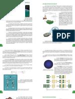 Guía Pedagógica #2 Química 3° Año