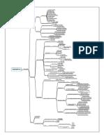 Mapa Mental Morfologia Substantivos