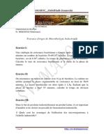TD_ Micro Industrielle