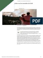 Cinq Mythes Sur Les Incendies de Forêt