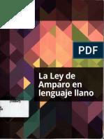 La Nueva Ley de Amparo en Lenguaje Sencillo