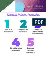 Temario Mindfulness 1o Sec