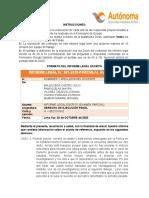 MODELO DE INFORME LEGAL - CASO 2