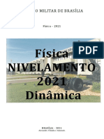 Dinâmica Nivelamento 2021